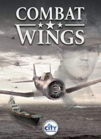 Combat Wings PC